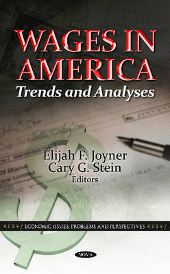 Wages in America: Trends & Analyses (Hardback)