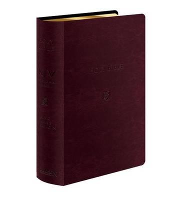 KJV Devotional Bible (Leather / fine binding)