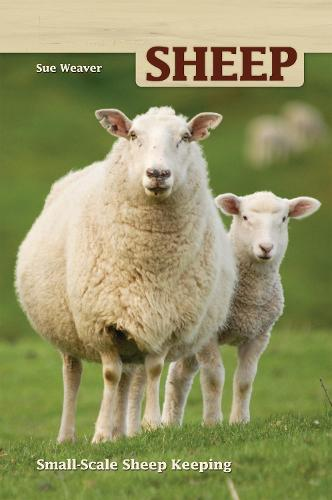 Sheep: Small Scale Sheep Keeping (Paperback)