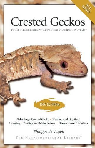 Crested Geckos (Paperback)