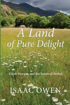 A Land of Pure Delight: Elijah Morgan and the Saints of Bethel (Paperback)