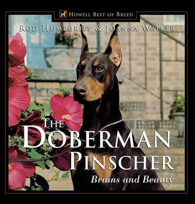The Doberman Pinscher: Brains and Beauty (Paperback)