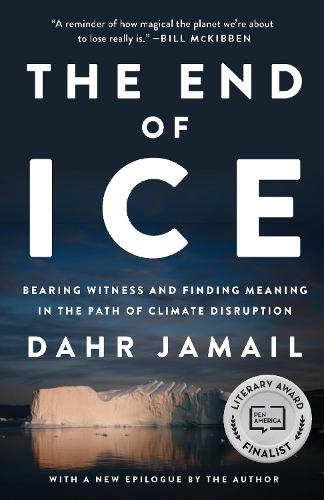 The End Of Ice (Paperback)