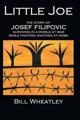 Little Joe - The Story of Josef Filipovic Surviving in a World at War While Fighting Another at Home (Paperback)