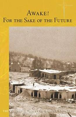 Awake! For the Sake of the Future (Paperback)