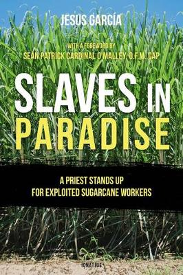 Slaves in Paradise: A Priest Stands Up for Exploited Sugarcane Workers (Paperback)