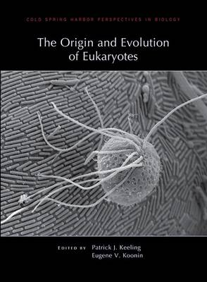 The Origin and Evolution of Eukaryotes - Cold Spring Harbor Perspectives in Biology (Hardback)