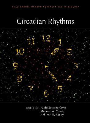 Circadian Rhythms - Perspectives Cshl (Hardback)