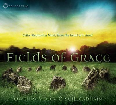Fields of Grace CD: Celtic Meditation Music from the Heart of Ireland (CD-Audio)