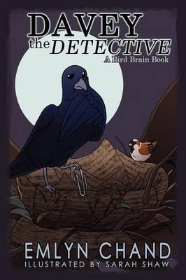 Davey the Detective (a Bird Brain Book) (Hardback)