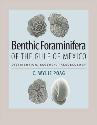 Benthic Foraminifera of the Gulf of Mexico: Distribution, Ecology, Paleoecology - Harte Research Institute for Gulf of Mexico Studies Series (Hardback)