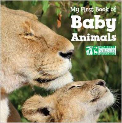 My First Book Of Baby Animals (National Wildlife Federation) (Board book)