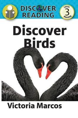 Discover Birds (Paperback)