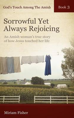 God's Touch Among The Amish Book 3 (Paperback)
