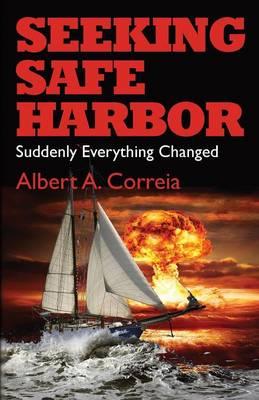 Seeking Safe Harbor: Suddenly Everything Changed (Paperback)