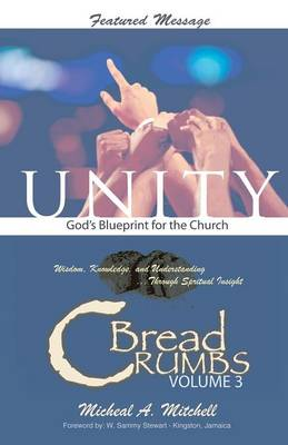 Unity God's Blueprint for the Church (Paperback)