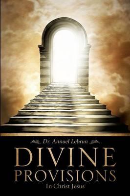 Divine Provisions (Paperback)