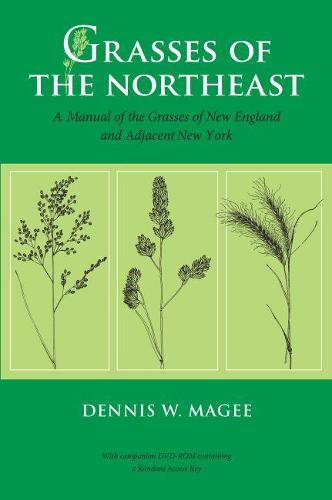 Grasses of the Northeast: A Manual of the Grasses of New England and Adjacent New York (Hardback)