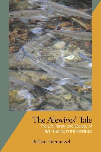 The Alewives Tale: The Life History and Ecology of River Herring in the Northeast (Paperback)