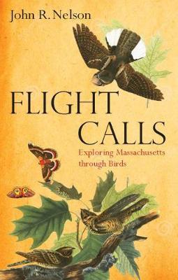 Flight Calls: Adventures with Massachusetts Birds (Paperback)