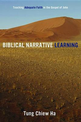 Biblical Narrative Learning (Paperback)