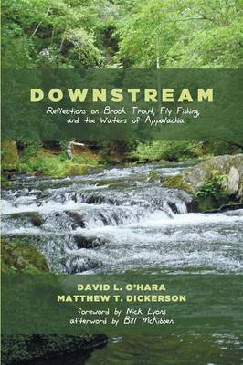 Downstream (Paperback)