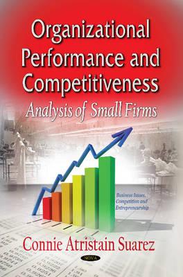 Organizational Performance & Competitiveness: Analysis of Small Firms (Hardback)