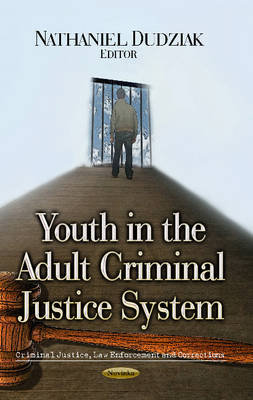 Youth in the Adult Criminal Justice System (Paperback)