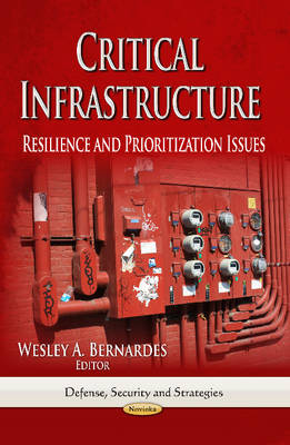 Critical Infrastructure: Resilience & Prioritization Issues (Paperback)
