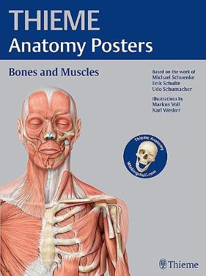 THIEME Anatomy Posters Bones and Muscles, Latin Nomeclature (Poster)