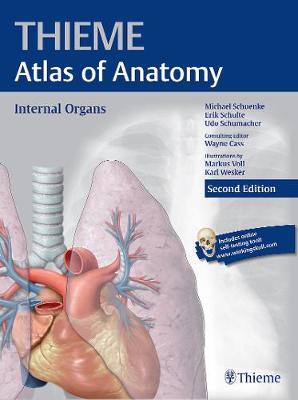 Internal Organs (THIEME Atlas of Anatomy) (Paperback)