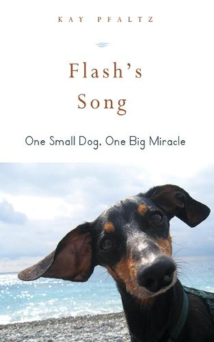 Flash's Song: How One Small Dog Turned into One Big Miracle (Hardback)