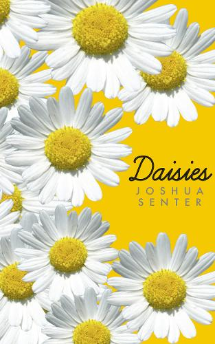 Daisies (Paperback)