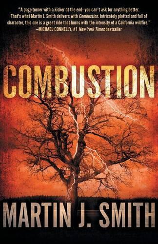 Combustion (Paperback)