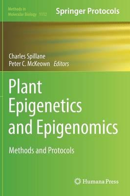 Plant Epigenetics and Epigenomics: Methods and Protocols - Methods in Molecular Biology 1112 (Hardback)