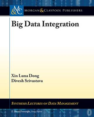 Big Data Integration - Synthesis Lectures on Data Management (Paperback)