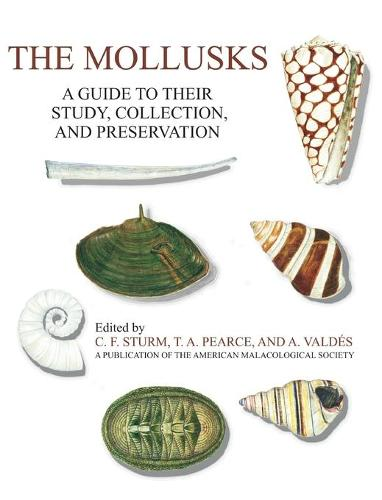 The Mollusks: A Guide to Their Study, Collection, and Preservation (Hardback)