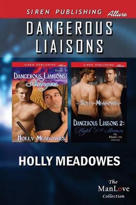 Dangerous Liaisons [Dangerous Liaisons 1: Strangers: Dangerous Liaisons 2: Flight of the Arrows] (Siren Publishing Allure Manlove) (Paperback)