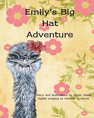 Emily's Big Hat Adventure (Paperback)
