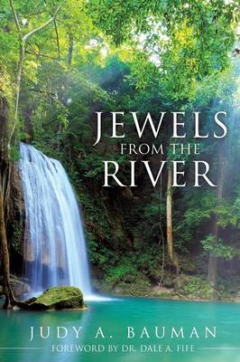 Jewels from the River (Paperback)