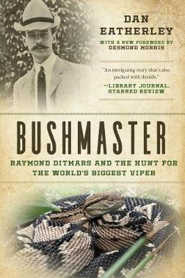 Bushmaster: Raymond Ditmars and the Hunt for the World's Largest Viper (Paperback)
