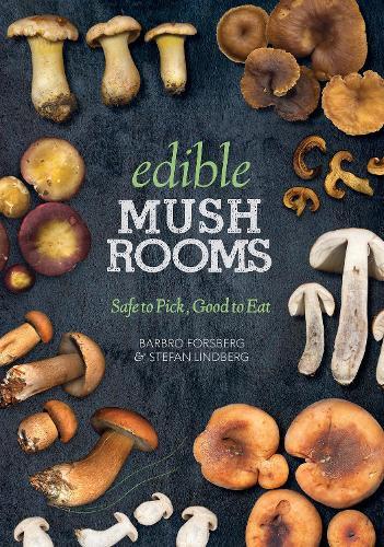 Edible Mushrooms: Safe to Pick, Good to Eat (Paperback)