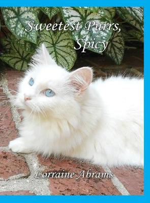 Sweetest Purrs, Spicy - Adventures of Spicy 4 (Hardback)