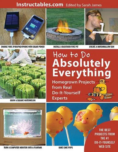 How to Do Absolutely Everything: Homegrown Projects from Real Do-It-Yourself Experts (Paperback)