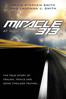 Miracle at Mile Marker 313 (Paperback)