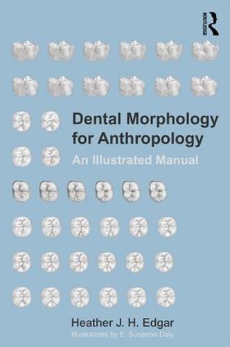 Dental Morphology for Anthropology: An Illustrated Manual (Paperback)
