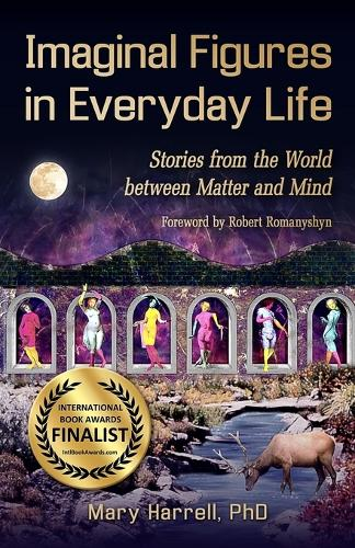 Imaginal Figures in Everyday Life: Stories from the World Between Matter and Mind (Paperback)