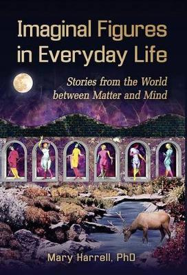 Imaginal Figures in Everyday Life: Stories from the World Between Matter and Mind (Hardback)