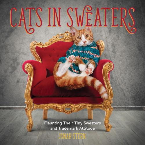 Cats in Sweaters: Flaunting Their Tiny Sweaters and Trademark Attitude (Hardback)
