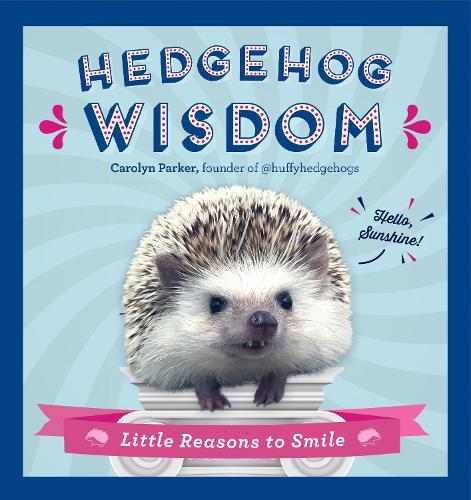 Hedgehog Wisdom: Little Reasons to Smile (Hardback)